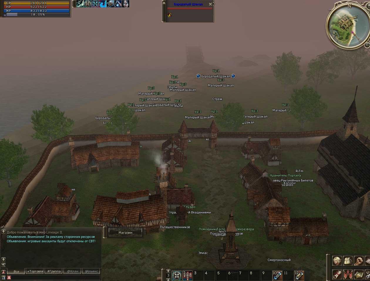 Демонстрационные скриншоты рабочего патча на zoom для РуОф.